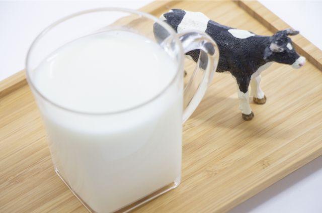 牛のおもちゃとコップに入った牛乳