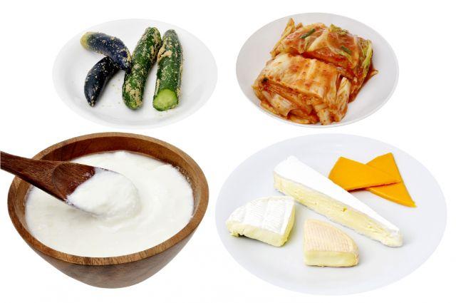 様々な発酵食品