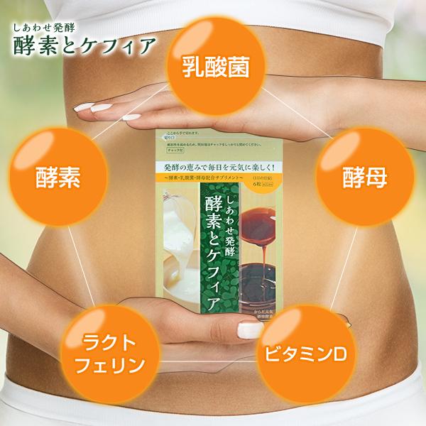 乳酸菌・酵母・ビタミンD・ラクトフェリン・酵素
