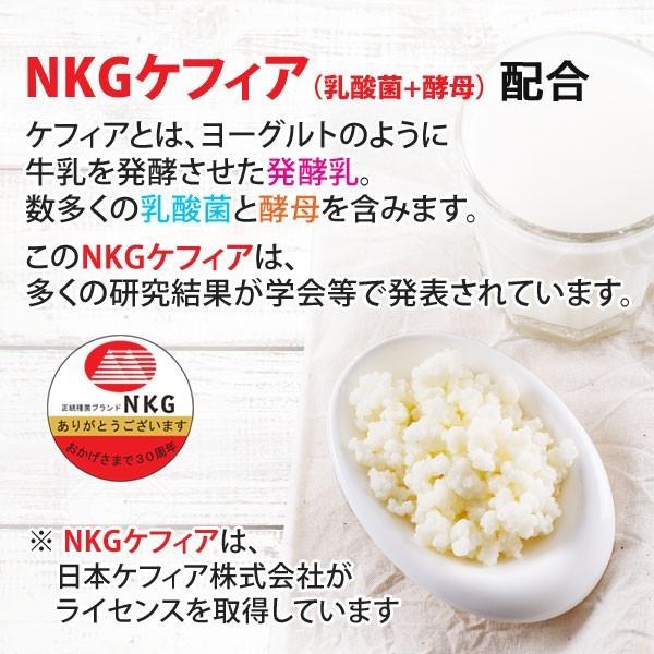 NKGケフィア(乳酸菌+酵母)配合