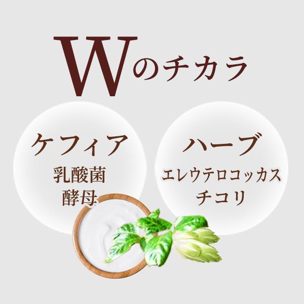 Wのチカラ ケフィア(乳酸菌・酵母)とハーブ(エレウテロコッカス・チコリ)