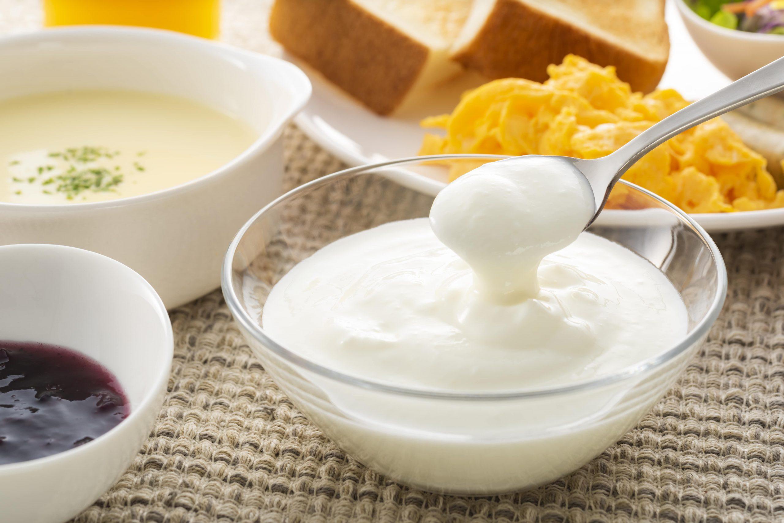 乳酸菌を摂ることのデメリットはあるか?